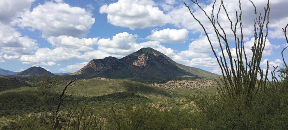 Riverside comienza perforación de 2,000 metros en proyecto en Sonora