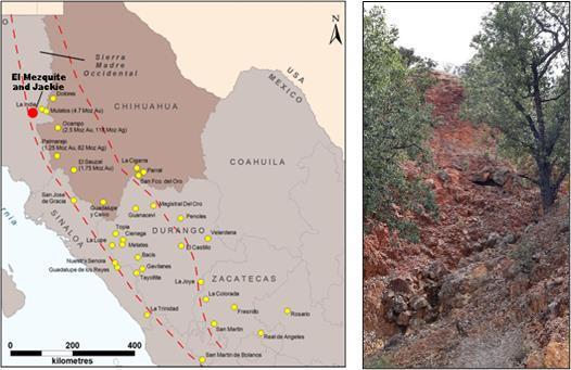 Silver Spruce avanza en proyecto El Mezquite en Sonora