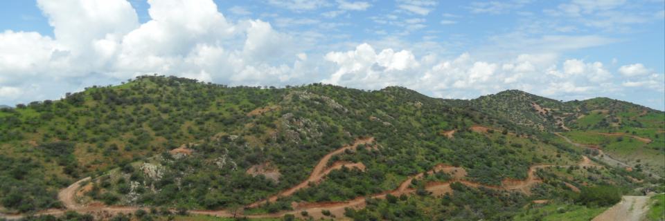 Kootenay Silver inicia pruebas metalúrgicas en Sonora